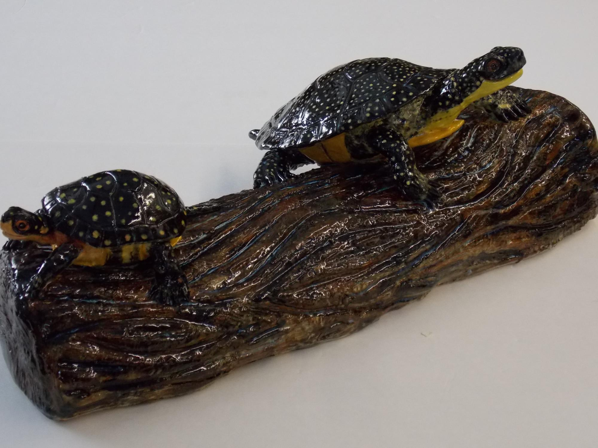 Blanding_s_and_Spotted_turtles_on_log__Muhich_2015__cone_6_ceramic__20_x_11_x_8_inches.JPG